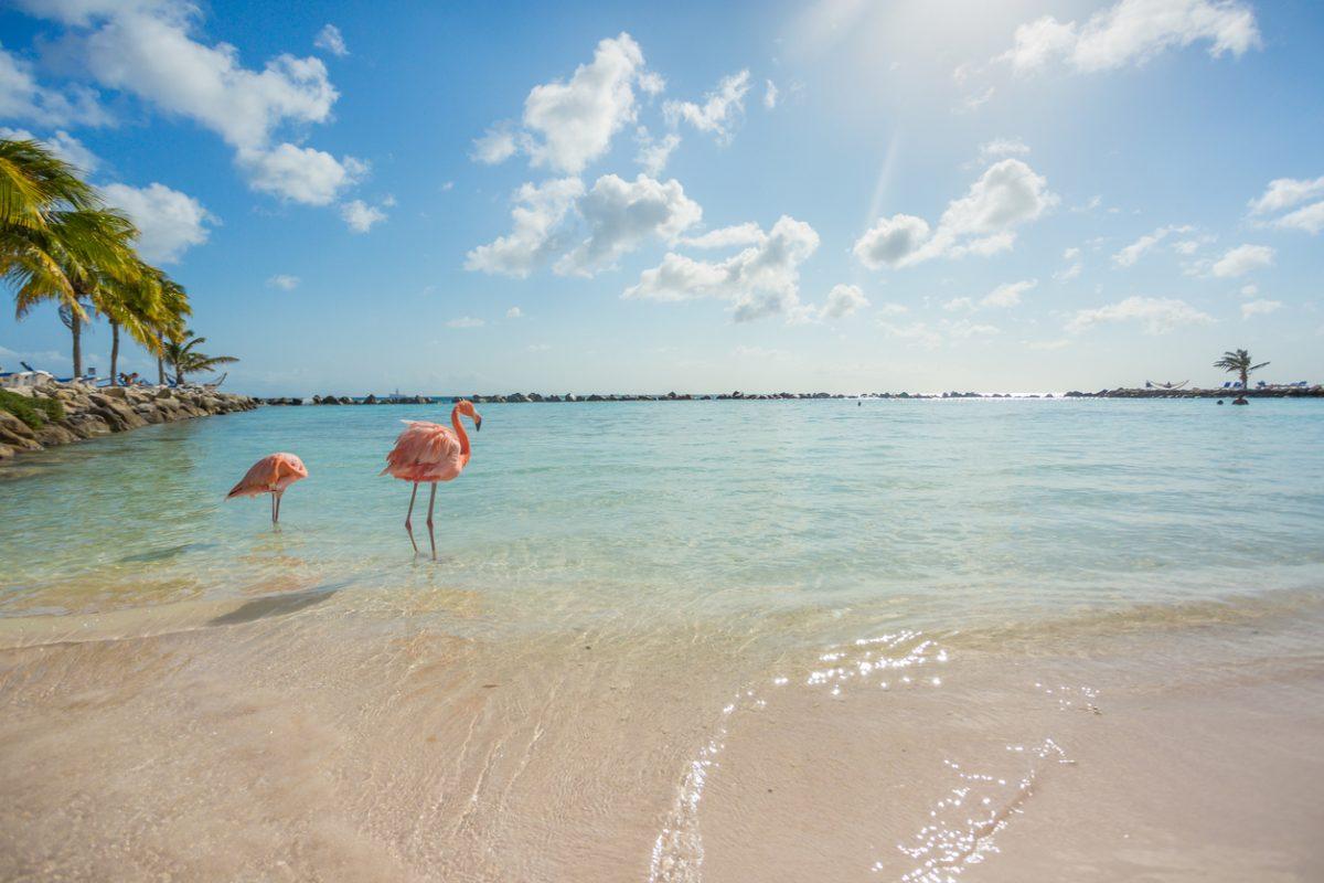 Aruba: klein van stuk, rijk aan geschiedenis