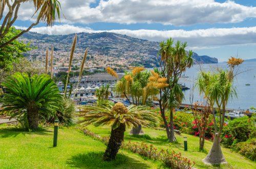 Madeira, het bloemeneiland van Portugal