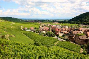 Dit zijn de 5 mooiste wijnroutes van Europa!