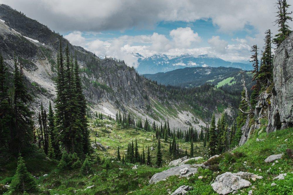 Mt. Revelstoke & Glacier National Parks