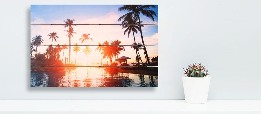 palmboom-herinneringenoplinnen