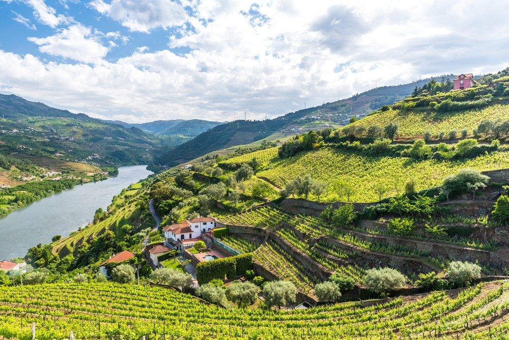 Authentiek Noord-Portugal Het Douro Portwijngebied